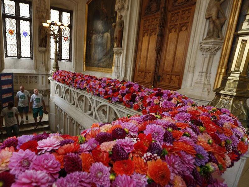 Flowertime in het stadhuis
